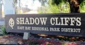 shadow cliffs regional